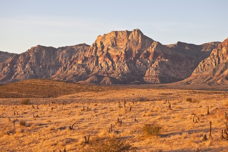 Warm dawn desert light in Nevada Stock Photo - 11747467