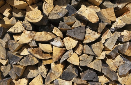 Stack of fresh cut firewood. Stock Photo - 11747474