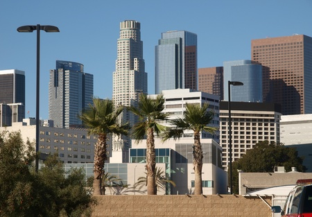 Los Angeles Palm Trees and Downtown Towers Stock Photo - 12428571