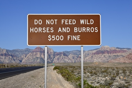 Do not feed the wild horses sign at Red Rock National Conservation Area near Las Vegas, Nevada  Stock Photo - 13419093