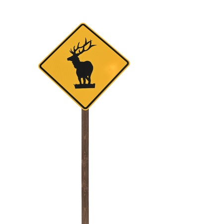 Tall isolated elk caution sign wooden post. Stock Photo - 13385821