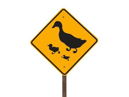 Duck crossing caution road sign isolated Stock Photo - 13419097