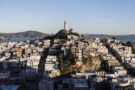 coit tower: Early morning light on Telegraph Hill and Coit Tower Park in San Francisco, California  Stock Photo