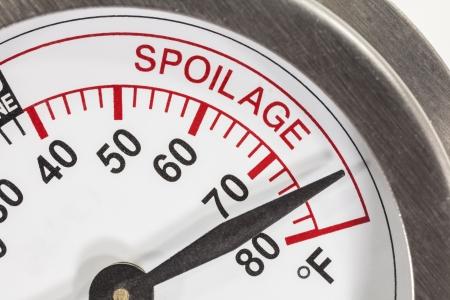 spoilage: Refrigerator thermometer spoilage area macro detail