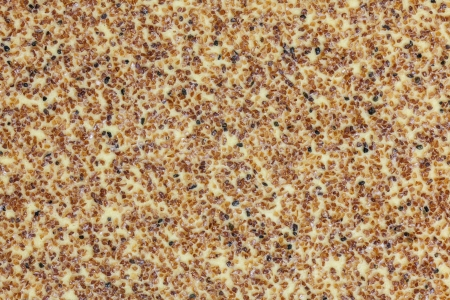 Sandpaper extreme macro background. Stock Photo - 20625188