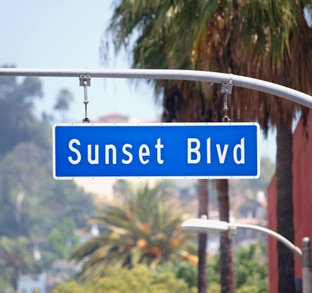 bl: Sunset Blvd street sign with palm trees in Hollywood, California.   Stock Photo