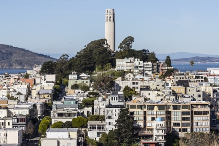 coit tower: Coit Tower Park and Telegraph Hill in San Francisco, California.