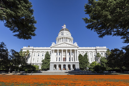 california state: California state capitol building with poppy field.   Stock Photo