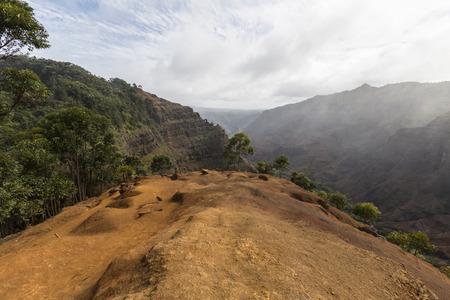 waimea canyon state park: Waimea Canyon cliff trail on the Hawaiian island of Kauai.