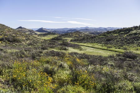 wildwood: Spring hills and meadows overlooking Thousand Oaks and the Santa Monica Mountains in Southern California.