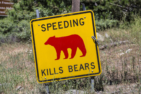 signage outdoor: Speeding kills bears warning sign in Californias Yosemite National Park.