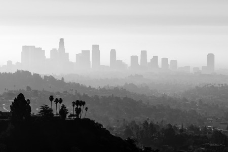 city park skyline: Downtown Los Angeles smog and fog black and white. Stock Photo