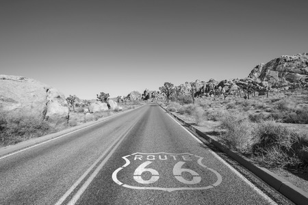Joshua Tree highway with Route 66 pavement sign in black and white.