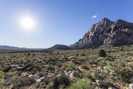 red rock national conservation area: Bright morning sun at Red Rock Canyon National Conservation Area near Las Vegas, Nevada.