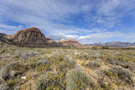 red rock national conservation area: Early morning at Red Rock Canyon National Conservation Area near Las Vegas, Nevada. Stock Photo
