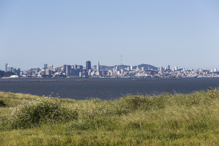san francisco bay: Morning meadow view across San Francisco Bay.