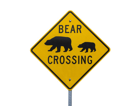 Bear Crossing highway sign isolated on white. Stock Photo