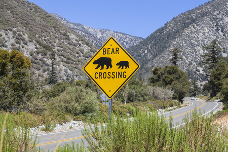 Bear crossing caution highway sign on rural mountain road. Stock Photo