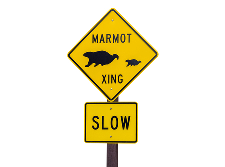 outs: Marmot crossing wildlife caution sign isolated on white.