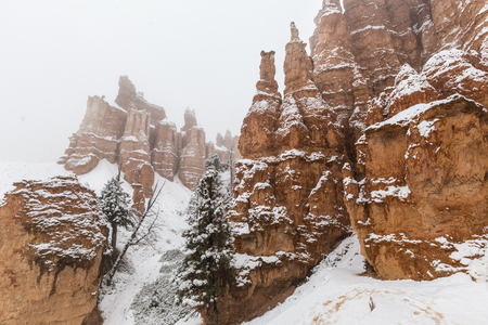 Snow storm and hoodoos at Bryce Canyon National Park in Southern Utah. Stock Photo