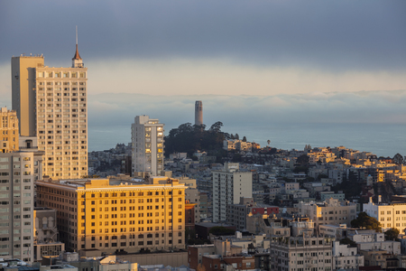 Morning fog near Coit Tower Park in urban San Francisco, California. Stock Photo