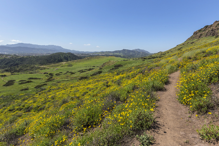 wildwood: Green hillside view of Wildwood Regional Park in the Ventura County community of Thousand Oaks, California. Stock Photo