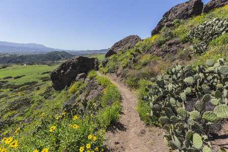 Green hillside trail in Wildwood Regional Park in the Thousand Oaks community of Ventura County, California.