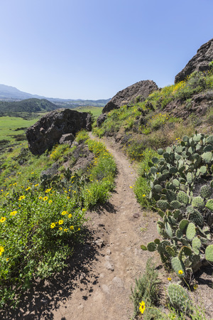 wildwood: Wildwood Regional Park hiking trail in Thousand Oaks, California. Stock Photo