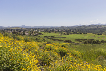 wildwood: Spring view of Thousand Oaks in Ventura County, California. Stock Photo