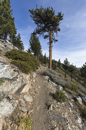 Pacific Crest Trail winding through the San Gabriel Mountains near Throop Peak in the Angeles National Forest above Los Angeles, California.   Stock Photo