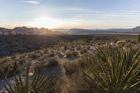 Dawn view from scenic loop overlook at Red Rock Canyon National Conservation Area near Las Vegas Nevada. Stock Photo
