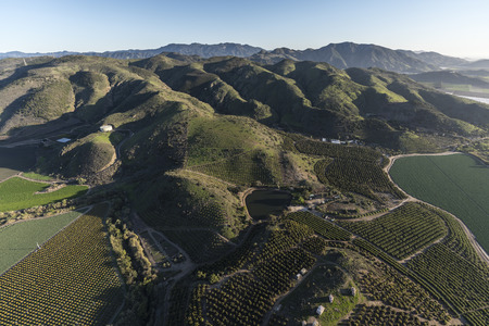 Aerial view of farm fields and hillside groves