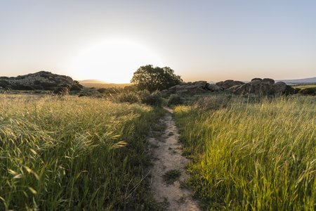 Sunrise meadow trail morning at Santa Susana Pass State Historic Park in the San Fernando Valley area of Los Angeles, California.   Stock Photo