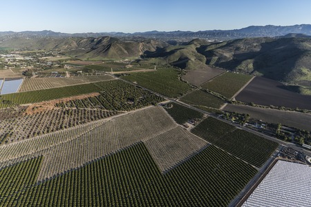 Aerial view of orchards, groves and farm fields near Camarillo in Ventura County, California.