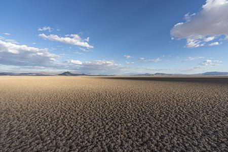 On the shadows edge at Soda Dry Lake near Zzyzx in the California Mojave Desert.