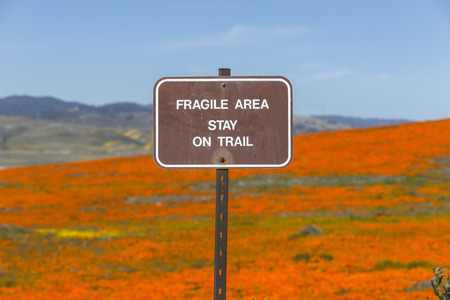 Fragile area stay on trail sign with California poppy meadow.