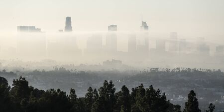Panorama view of morning fog rolling through downtown Los Angeles, California.  Photograph taken from mountaintop in popular Griffith Park.
