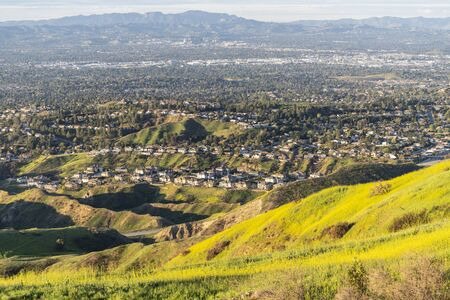 Wildflower mountain slopes and valley view homes in the San Fernando Valley area of north Los Angeles, California.