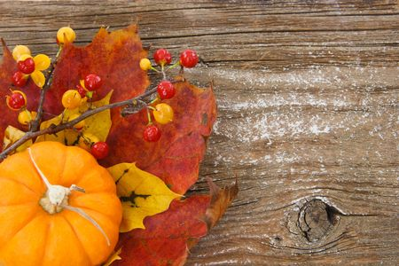 A country-inspired image with pumpkin, leaves and bittersweet berries in lower left against a textured wood background, leaving right side available as copy space. photo