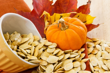 Colorful autumn still life with a yellow bowl overflowing with pumpkin seeds Stock Photo - 8130953