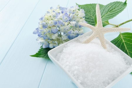 scrub: Still life with sea salt bath scrub accented with starfish and hydrangea blossom - copy space on left side Stock Photo
