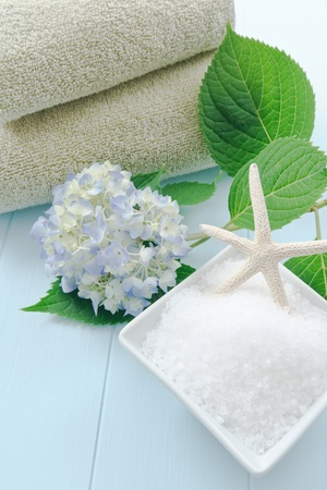 Sea salt bath scrub set against a light blue background accented with hydrangea and starfish.