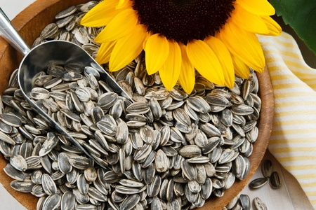 sunflower seed: Nutritious sunflower seeds fill a wood bowl, accented with a metal scoop and yellow sunflower Stock Photo