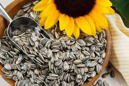 semillas de girasol: Semillas de girasol nutritivos llene un cuenco de madera, decorado con una cuchara de metal y amarillo girasol