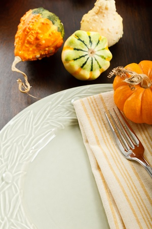 Colorful Autumn place setting with Fall Harvest gourds and pumpkin with copy space Фото со стока