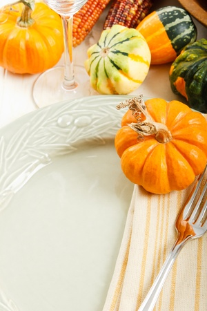 Autumn squash and pumpkin decorate a colorful Fall place setting with copy space photo