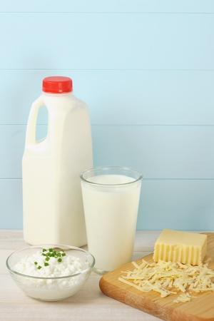 alergenos: La leche, el queso cottage y queso suizo rallado son las fuentes saludables de prote�nas alerg�nicas y los alimentos