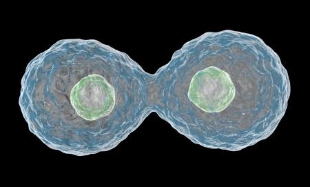 multiplying: Multiplying Cells on Black Background