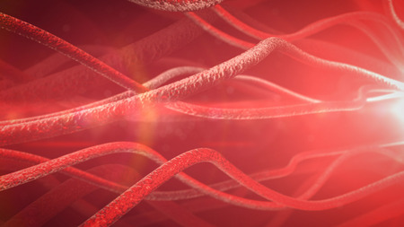dendrites: Neurons and nervous system. 3d render Stock Photo