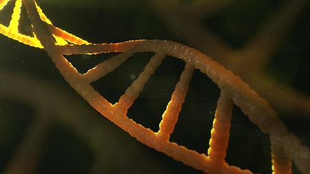 macroscopic: 3d rendering of DNA molecule structure on dark.